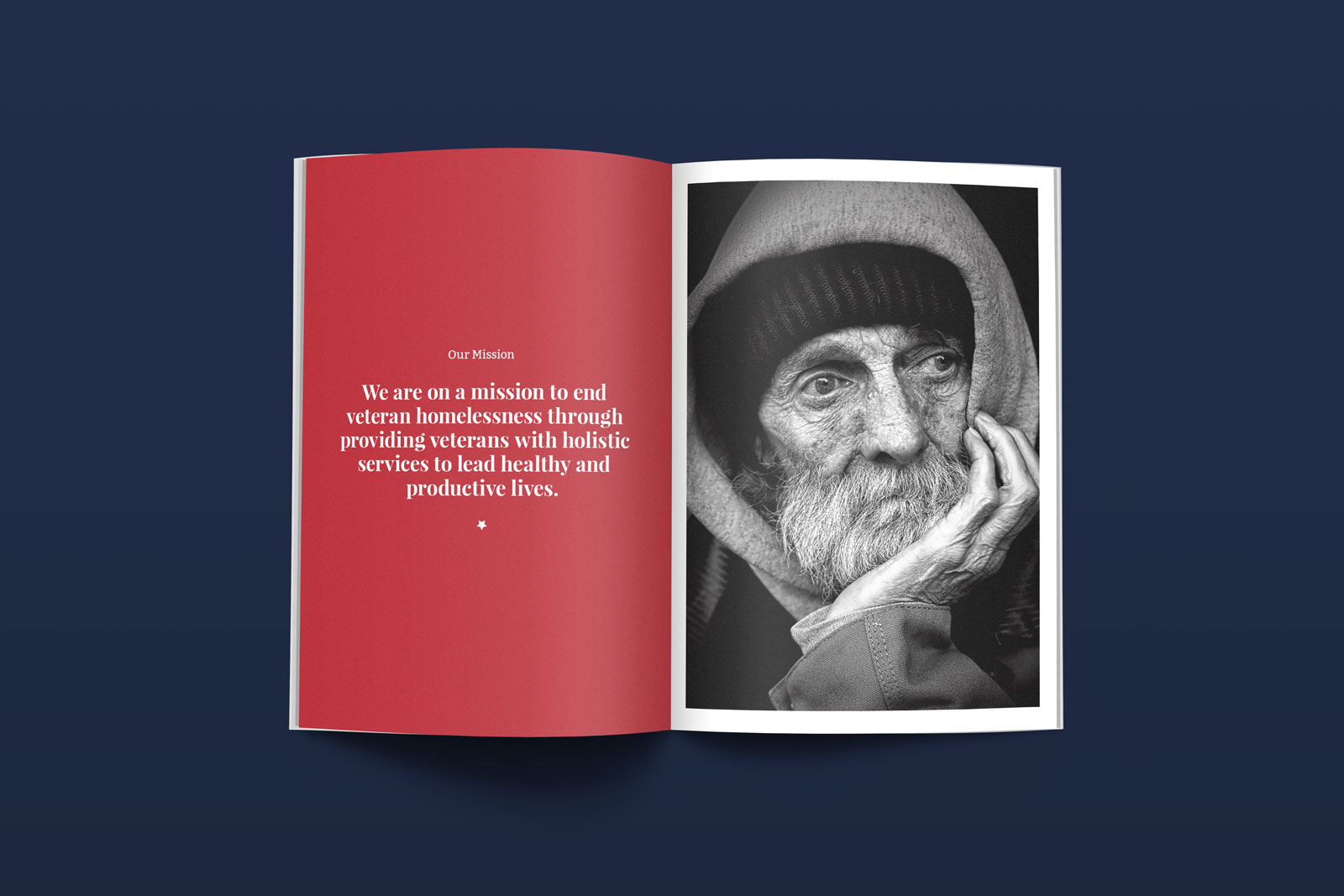 VOTR Brochure 1
